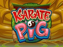 Игровой автомат Karate Pig – играть онлайн на деньги в игровой автомат прямо сейчас